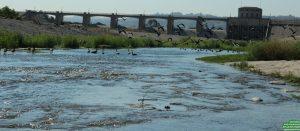 LA River Paddle 036